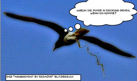 Shitting-Seagull-Beschnitten