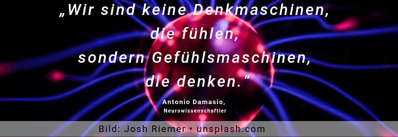 Copy of Antonio Damasio Zitat