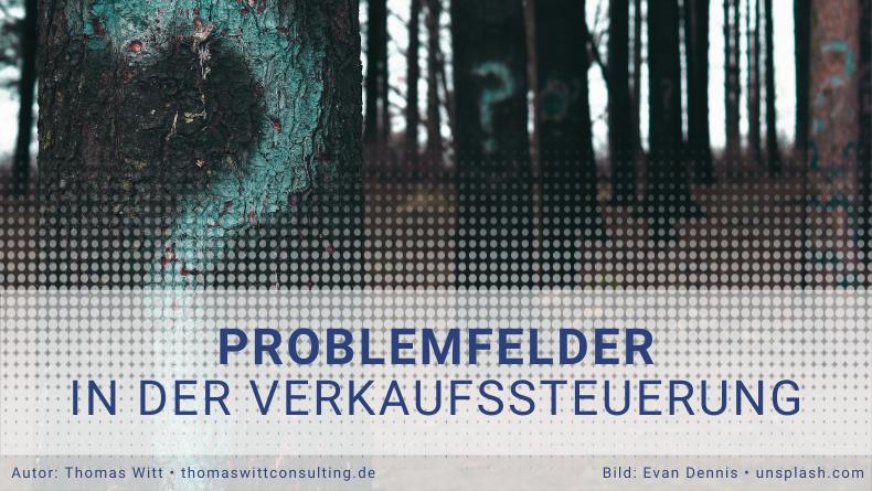 Thomas Witt Consulting | Problemfelder in der Verkaufssteuerung