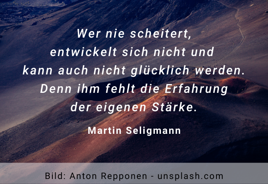 Wer nie scheitert - Martin Seligmann